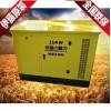 静音式15KW汽油发电机YT15REG