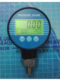 PM-2000电池供电数显压力表