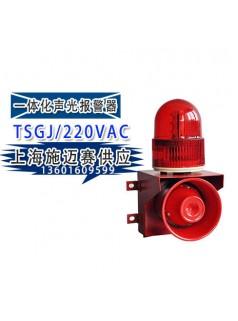 TSGJ声光报警器TSGJ-220VAC