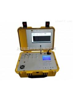 在线便携燃气分析仪