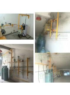 壁挂式气化炉30KG/H电加热型