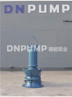 德能泵业井筒立式轴流泵
