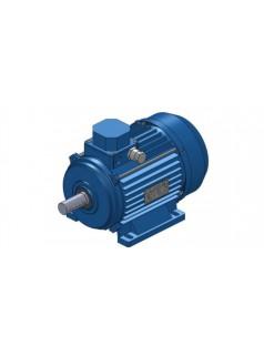 ELMOT-SCHAFER电机TE Q2E 100 L4C