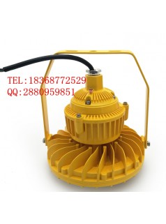 LX-BFC8181F80-60w泛光灯LED防爆灯浙江厂家