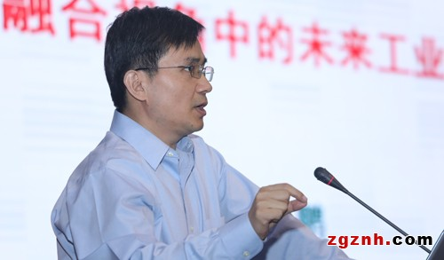工信部信息化和软件服务业司副司长安筱鹏