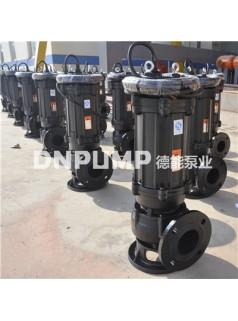 潜水排污泵各种各种型号生产厂