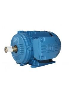 WEG高效电机