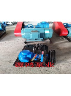沧州源鸿NYP3-1.0高粘度转子泵,高粘度齿轮泵