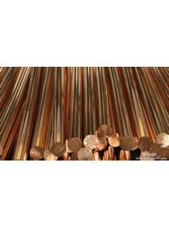 五金加工专用T2紫铜棒 加工定制紫铜方棒=扁棒