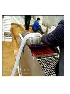 泡沫穴育苗播种机 穴盘育苗播种机 漂盘育苗播种机