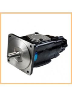 VDC-2A-F86B-20 (台湾戈力油泵泵.泵的传承)