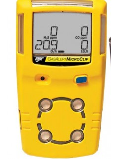 进口加拿大BW-MC2-4有害气体探测器