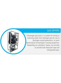 意大利Flenco氢气干燥机