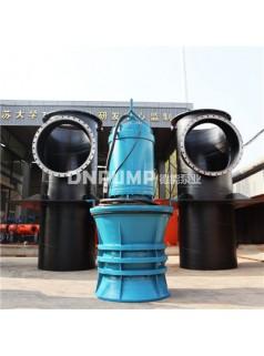 6000V高压潜水混流泵