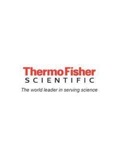 新款THERMO FISHER电极         ROSS  2001SC