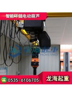 智能环链电动葫芦500公斤,可视化界面电动葫芦