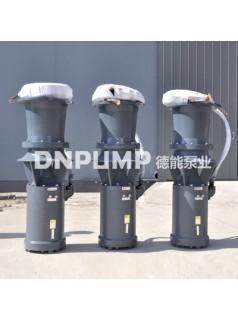 供应天津德能泵业大口径悬浮式潜水轴流泵