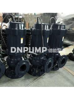 供应天津德能泵业浮筒式WQ潜水排污泵