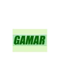 意大利GAMAR电机