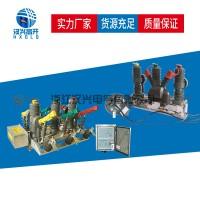 汉兴电气ZW32-12F户外高压真空断路器智能型
