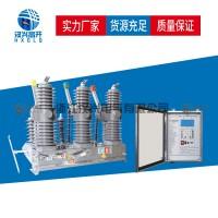 汉兴电气ZW32-24FG户外高压真空断路器