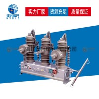 汉兴电气ZW43-12(G)户外高压真空断路器